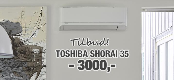 Toshiba Shorai